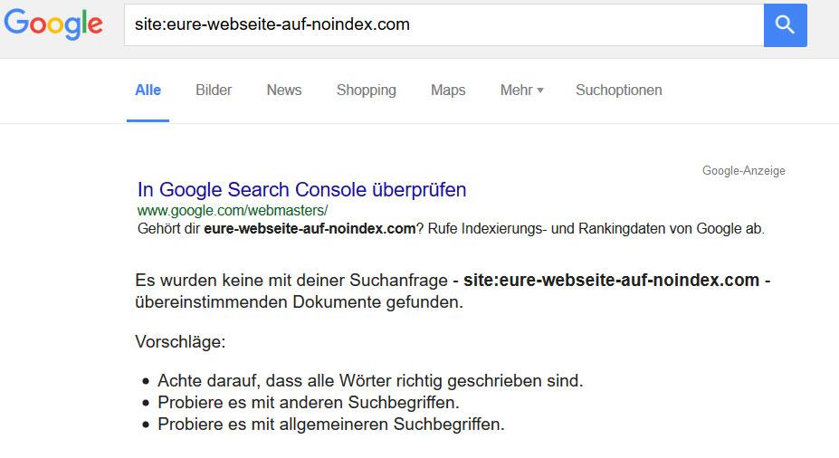 Wordpress Webseite noindex bei Google